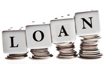Domestic Loan