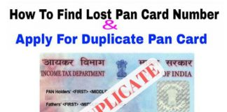 Misplaced Your PAN Card? Here's How You Can Get a Duplicate Copy
